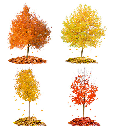 Collection of trees with red and yellow leaves falling down isolated on white