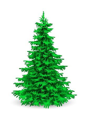 Illustration pour Christmas tree. Herringbone on a white background. Evergreen coniferous tree. - image libre de droit