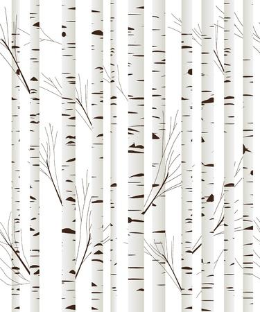 White Birch Pattern