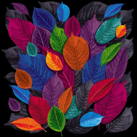 Vektor für Dark autumn leaves on black background - Lizenzfreies Bild