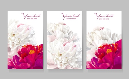 Floral greeting cards with red and white peony flowers