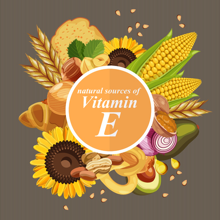 Illustration pour Groups of healthy fruit, vegetables, meat, fish and dairy products containing specific vitamins. Vitamin E. - image libre de droit