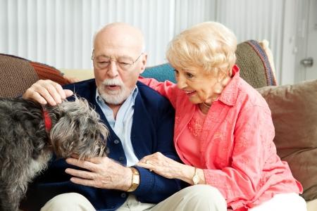 Foto de Senior couple at home with their adorable scruffy little dog.   - Imagen libre de derechos