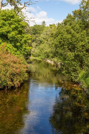 River and forest with reflections, Cong, Mayo, Ireland
