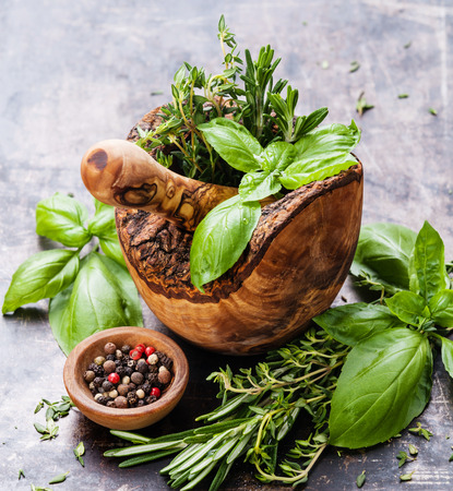 Photo pour Fresh spicy herbs in olive wood Mortar on dark background - image libre de droit