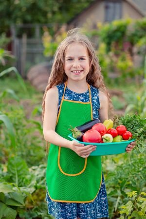 Photo for Cute little girl in the garden with a crop of ripe vegetables. The girl collects a crop of ripe organic tomatoes in the garden. - Royalty Free Image