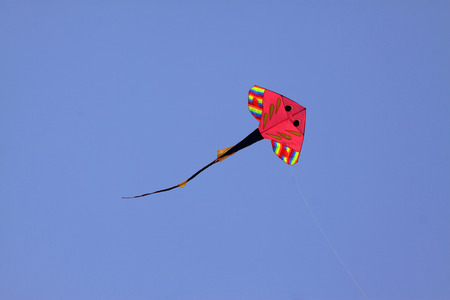 sole modelling kite floating in the sky