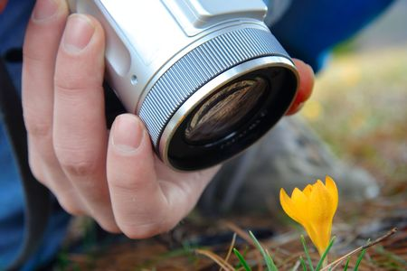 Person taking picture on a flower