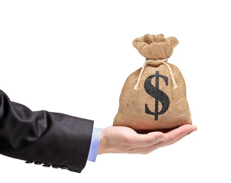 A view of a hand holding a money bag isolated on white
