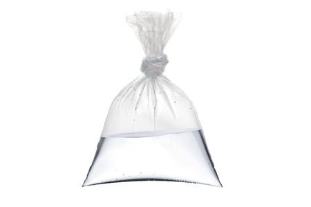 An empty plastic bag with water isolated on white background
