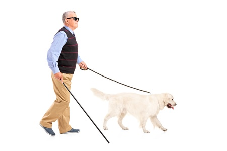 Full length portrait of a blind man moving with walking stick and his dog, isolated on white background