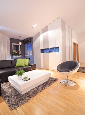View of a living room in modern apartment