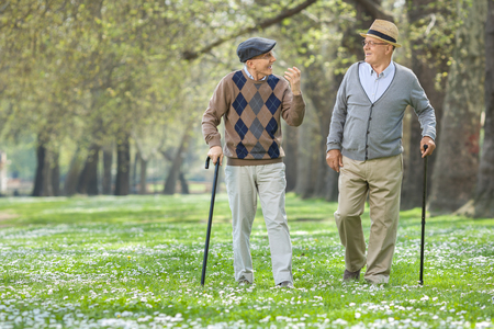 Photo pour Two cheerful elderly men walking in a park and having a conversation - image libre de droit