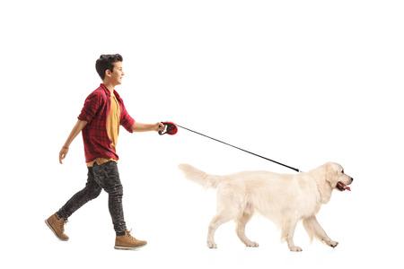 Foto de Full length portrait of a little boy walking a dog isolated on white background - Imagen libre de derechos
