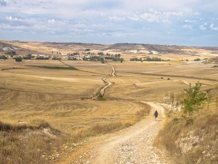 Foto de Pilgrims walk across the Meseta (central plateau) towards Hornillos del Camino - Castile and Leon, Spain - Imagen libre de derechos