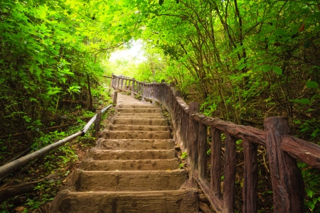 Photo for Stairway to forest, Erawan national park,Kanchanburi,Thailand - Royalty Free Image