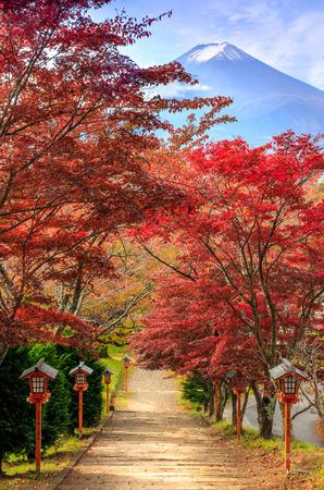 Photo pour Path to Mt. Fuji in autumn, Fujiyoshida, Japan - image libre de droit