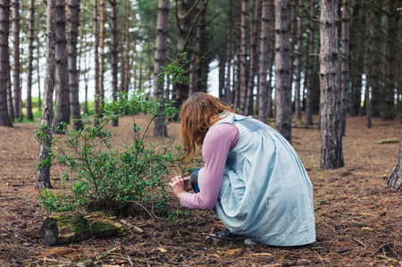 A young woman is foraging in the clearing of a forest