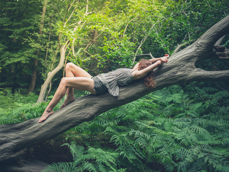 A sensual young woman with bare feet is lying on a fallen tree in the forest surrounded by green ferns