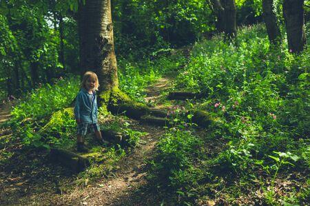 Foto de A little toddler is walking in the woods - Imagen libre de derechos