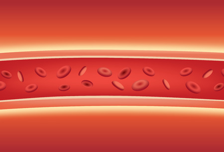 Inside of blood vessels. Illustration about medical and anatomy.