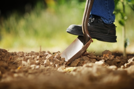 Photo pour Digging spring soil with shovel. Close-up, shallow DOF. - image libre de droit