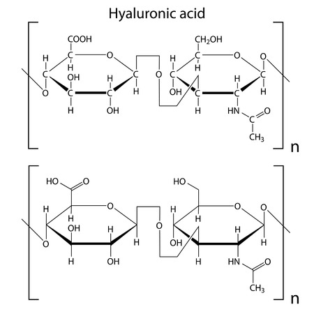 Chemical formula of hyaluronic acid, molecular structure, 2d isolated vector, eps 8