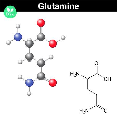 Vektor für Glutamine proteinogenic amino acid - chemical formula and model, 2d and 3d illustration, vector isolated on white background - Lizenzfreies Bild