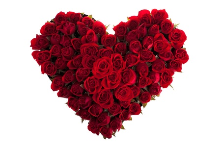 Red Roses in Love Shape