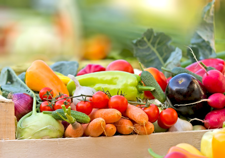 Foto de Fresh organic vegetables - Imagen libre de derechos