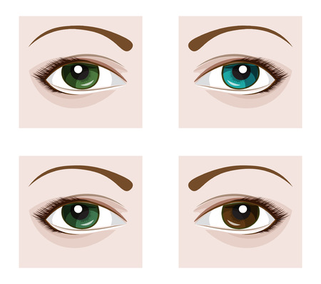 a eye with eyelashes, four flowers blue, green, brown and gray