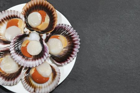 Photo pour A white plate of big raw fresh scallops with orange caviar and shells on a dark background. Copy space. - image libre de droit
