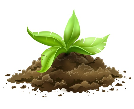 Illustration pour plant with green leaves growing from the ground isolated on white background   - image libre de droit
