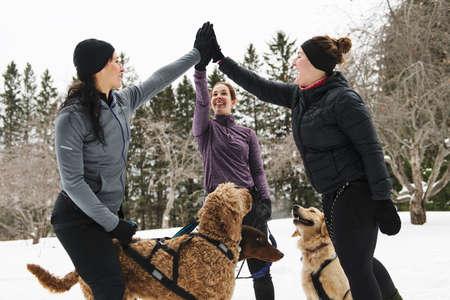 Photo pour Canicross woman group have fun in winter season - image libre de droit