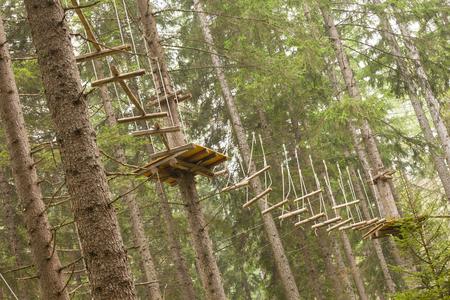 Foto de Tree climbing long an equipped route inside a n Italian woods in Dolomites, Italy. - Imagen libre de derechos