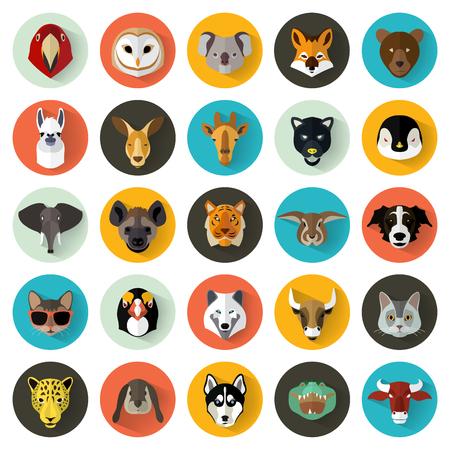 Foto de Animal Portrait Set with Flat Design / Vector Illustration - Imagen libre de derechos