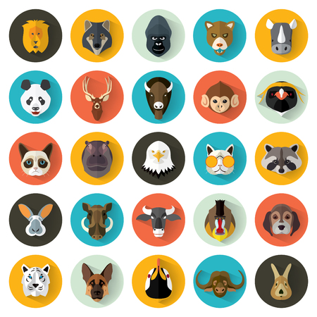 Animal Portrait Set with Flat Design / Vector Illustrationのイラスト素材