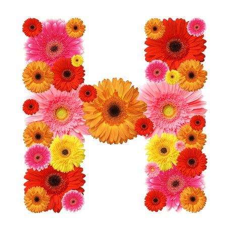 H, flower alphabet isolated on white