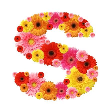 flower alphabet, s, lower case character