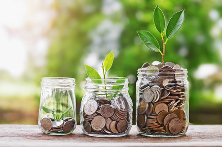Photo pour Plant growing Coins in glass  jar with investment financial concept and green nature sunlight - image libre de droit