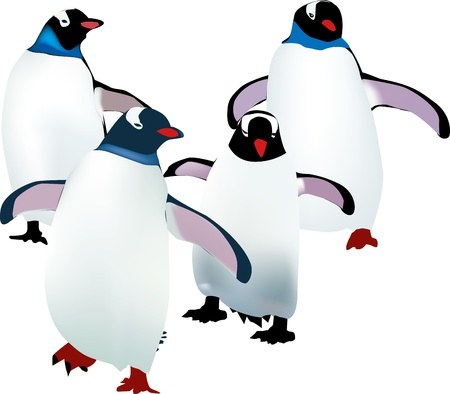 four little penguins learning to walk