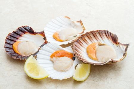 Photo pour group of fresh scallops - image libre de droit