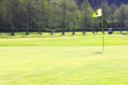 Golf flag on course over beautiful forest background