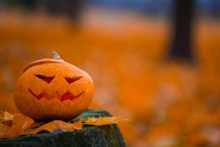 Photo pour Orange Autumn leaves and halloween pumpkin on stump, background with copy space for text - image libre de droit