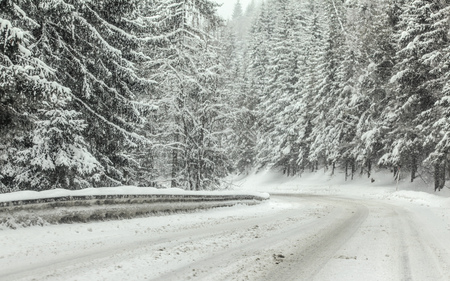Photo pour Forest road covered with snow during winter blizzard snowstorm, trees on both sides. Dangerous driving conditions - image libre de droit