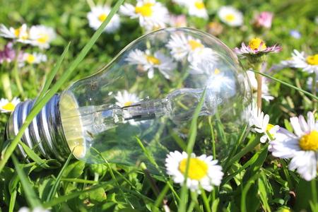 spring idea