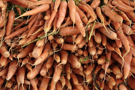 Closeup of carrots produce