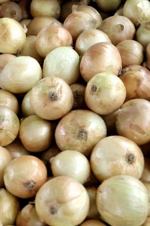 A food theme: Onions