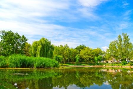 Foto de Lake in green nature city park  - Imagen libre de derechos