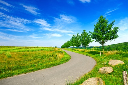 Photo for Road in green field and blue sky - Royalty Free Image